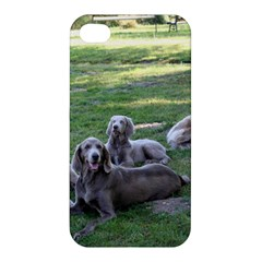 Longhair Weims Apple iPhone 4/4S Hardshell Case