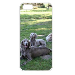 Longhair Weims Apple iPhone 5 Seamless Case (White)