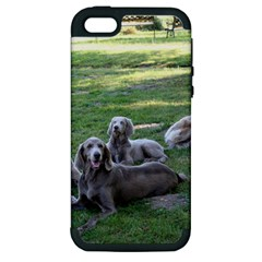 Longhair Weims Apple iPhone 5 Hardshell Case (PC+Silicone)
