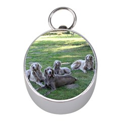 Longhair Weims Mini Silver Compasses