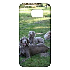 Longhair Weims Galaxy S6