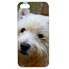 West Highland White Terrier Apple iPhone 5 Hardshell Case with Stand