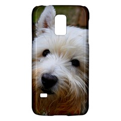 West Highland White Terrier Galaxy S5 Mini