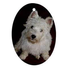 West highland white terrier puppy Ornament (Oval)