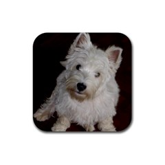 West highland white terrier puppy Rubber Square Coaster (4 pack)