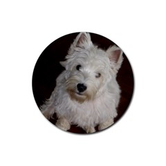 West highland white terrier puppy Rubber Coaster (Round)