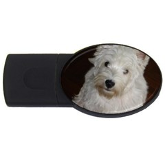 West highland white terrier puppy USB Flash Drive Oval (4 GB)