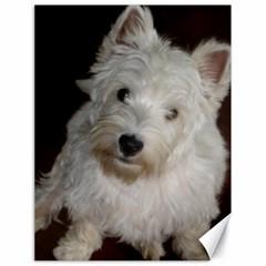 West highland white terrier puppy Canvas 18  x 24