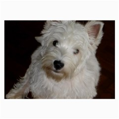 West highland white terrier puppy Large Glasses Cloth