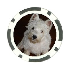 West highland white terrier puppy Poker Chip Card Guard (10 pack)