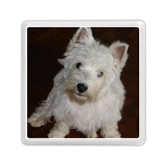 West highland white terrier puppy Memory Card Reader (Square)