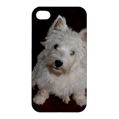 West highland white terrier puppy Apple iPhone 4/4S Hardshell Case