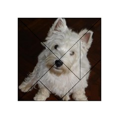 West highland white terrier puppy Acrylic Tangram Puzzle (4  x 4 )