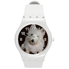 West highland white terrier puppy Round Plastic Sport Watch (M)