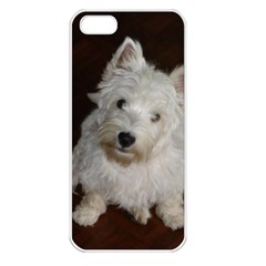 West highland white terrier puppy Apple iPhone 5 Seamless Case (White)