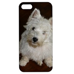 West highland white terrier puppy Apple iPhone 5 Hardshell Case with Stand