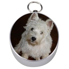 West highland white terrier puppy Silver Compasses