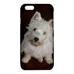 West highland white terrier puppy iPhone 6/6S TPU Case