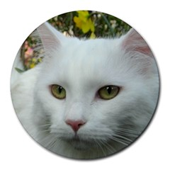 Maine Coon 4 Round Mousepads