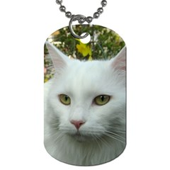 Maine Coon 4 Dog Tag (One Side)