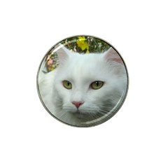 Maine Coon 4 Hat Clip Ball Marker (4 pack)