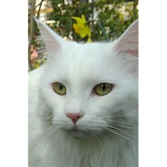 Maine Coon 4 5.5  x 8.5  Notebooks