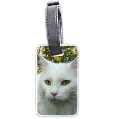 Maine Coon 4 Luggage Tags (One Side)