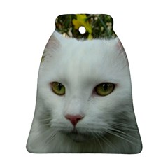 Maine Coon 4 Ornament (Bell)