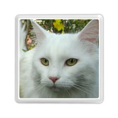 Maine Coon 4 Memory Card Reader (Square)