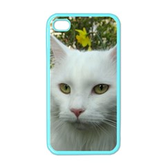 Maine Coon 4 Apple iPhone 4 Case (Color)