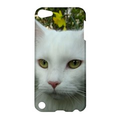 Maine Coon 4 Apple iPod Touch 5 Hardshell Case