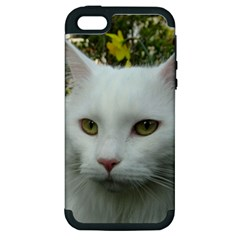 Maine Coon 4 Apple iPhone 5 Hardshell Case (PC+Silicone)