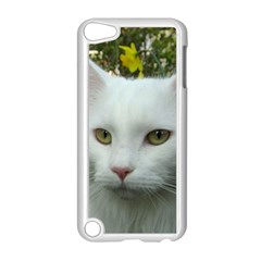 Maine Coon 4 Apple iPod Touch 5 Case (White)