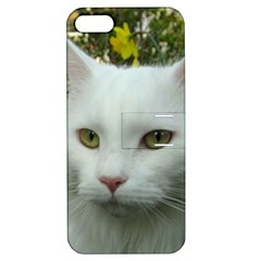 Maine Coon 4 Apple iPhone 5 Hardshell Case with Stand