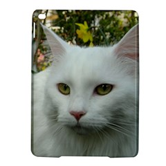 Maine Coon 4 iPad Air 2 Hardshell Cases