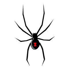 Black Widow cartoon Shower Curtain 48  x 72  (Small)