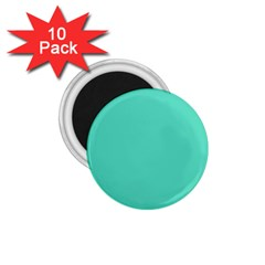 Classic Tiffany Aqua Blue Solid Color 1.75  Magnets (10 pack)
