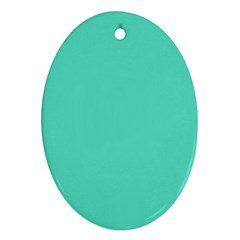 Classic Tiffany Aqua Blue Solid Color Oval Ornament (Two Sides)