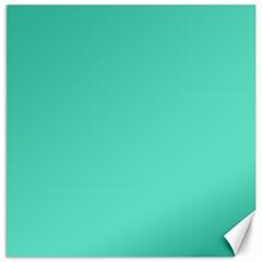 Classic Tiffany Aqua Blue Solid Color Canvas 20  x 20