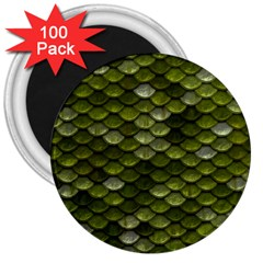 Green Scales 3  Magnets (100 pack)