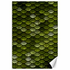 Green Scales Canvas 20  x 30