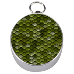 Green Scales Silver Compasses