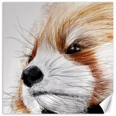 Panda Art Canvas 20  x 20