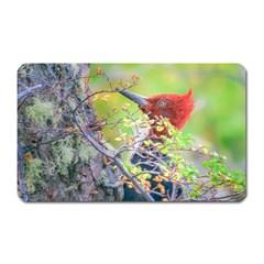 Woodpecker At Forest Pecking Tree, Patagonia, Argentina Magnet (Rectangular)
