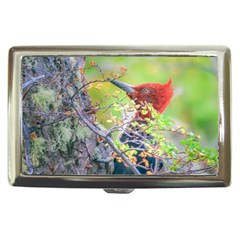 Woodpecker At Forest Pecking Tree, Patagonia, Argentina Cigarette Money Cases