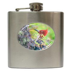 Woodpecker At Forest Pecking Tree, Patagonia, Argentina Hip Flask (6 oz)