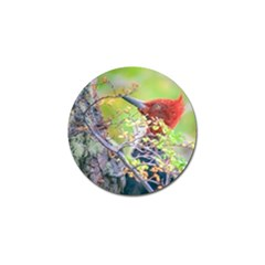 Woodpecker At Forest Pecking Tree, Patagonia, Argentina Golf Ball Marker (10 pack)