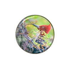 Woodpecker At Forest Pecking Tree, Patagonia, Argentina Hat Clip Ball Marker