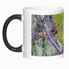 Woodpecker At Forest Pecking Tree, Patagonia, Argentina Morph Mugs