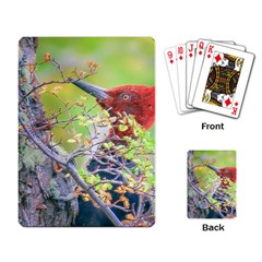 Woodpecker At Forest Pecking Tree, Patagonia, Argentina Playing Card